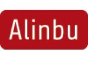 Alinbu TYPO3 Freelancer Büro