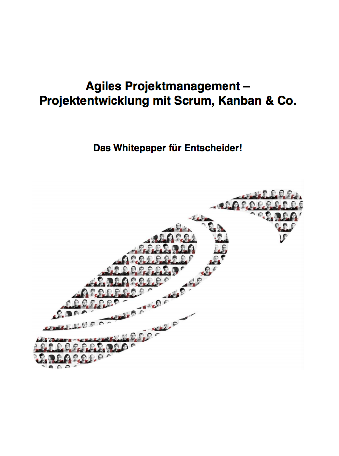 Cover_Whitepaper Agiles Projektmanagement