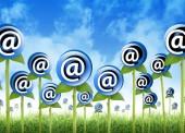 E-Mail-Marketing: Must Haves und No-Gos
