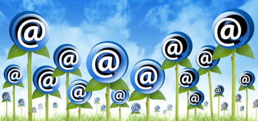 E-Mail-Marketing trägt Früchte