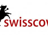 Suchmaschine Swisscows gewinnt Marktanteile durch Firmenkunden
