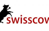Schweizer Suchmaschine macht gegen google mobil