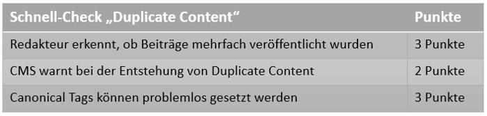 Checkliste Vermeidung Duplicate Content