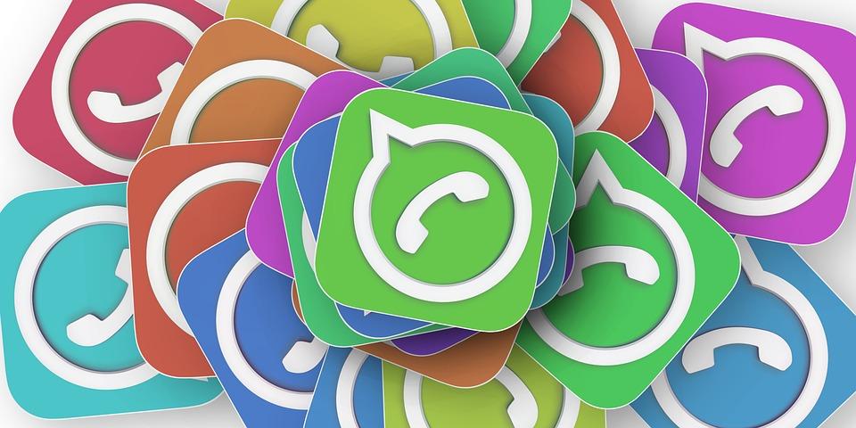 WhatsApp Newsletter Icon WhatsApp