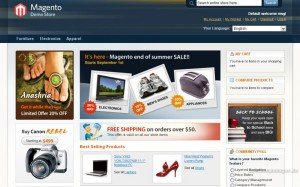 Beispiel für einen Online-Shop über das Shopsystem Magento