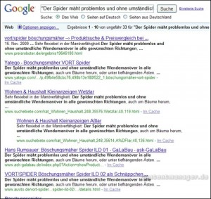 Google-Ergebnisse einer Phrase aus einer Produktbeschreibung
